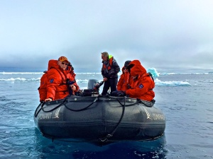 In the Weddell Sea