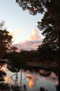 Pantanal 12