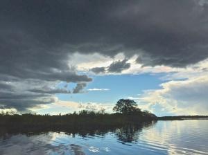 Pantanal 3