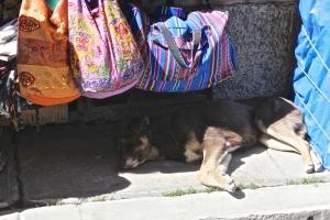 La Paz Day 2 7