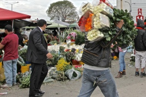 At the Fruit & Flower Market