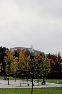 View of the Castle from the gardens