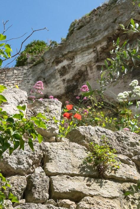 Carcassonne-243