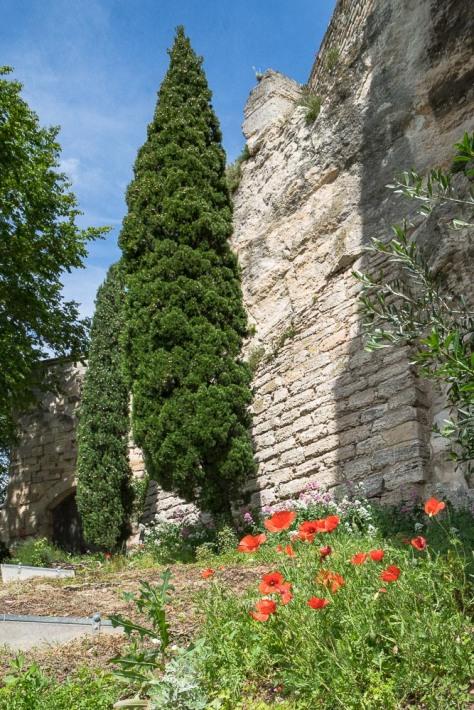Carcassonne-245