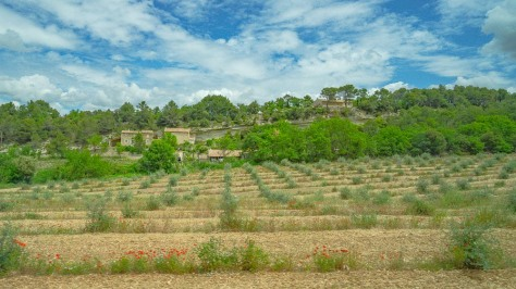Luberon Hill Towns-69