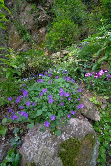 Tain l'Hermitage & Tounons sur Rhone-41