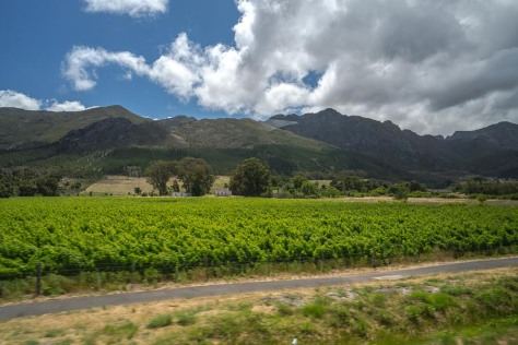 cape-town-day-3-23