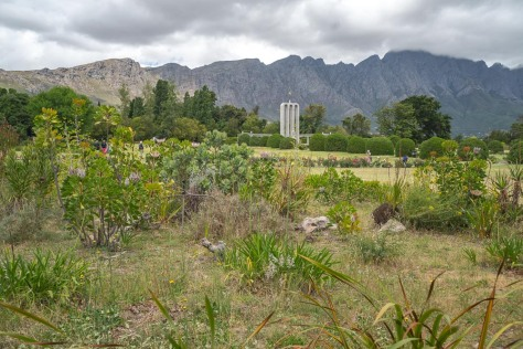 cape-town-day-3-46