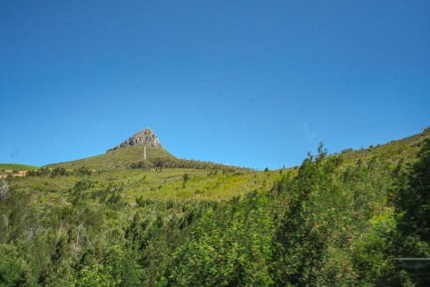 cape-town-day-3-83