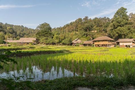 chiang-mai-522