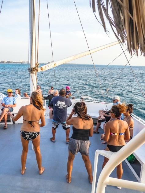 Aruba-296