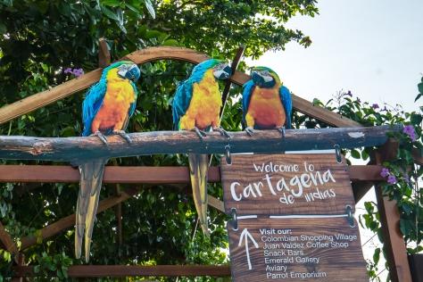 Cartagena-45