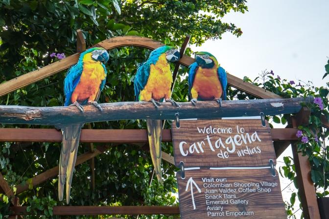 Cartagena de Indias Welcomes You!