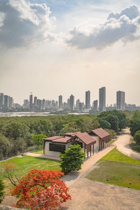 Panama City-11
