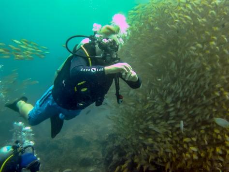 Phi Phi Dive Trip-12