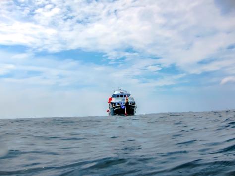Phi Phi Dive Trip-25