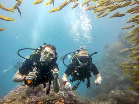 Phi Phi Dive Trip-6