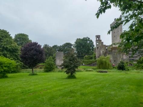 Blarney Castle-15