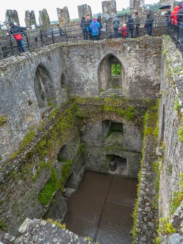 Blarney Castle-30