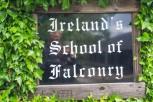 Killarney-502
