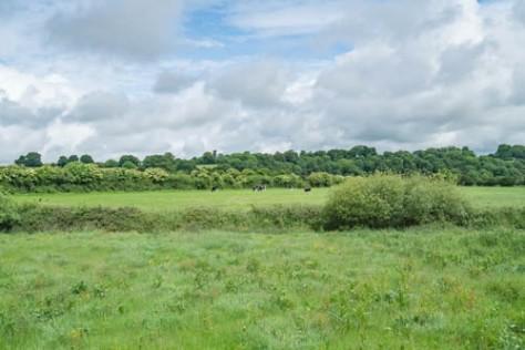 Newgrange-10