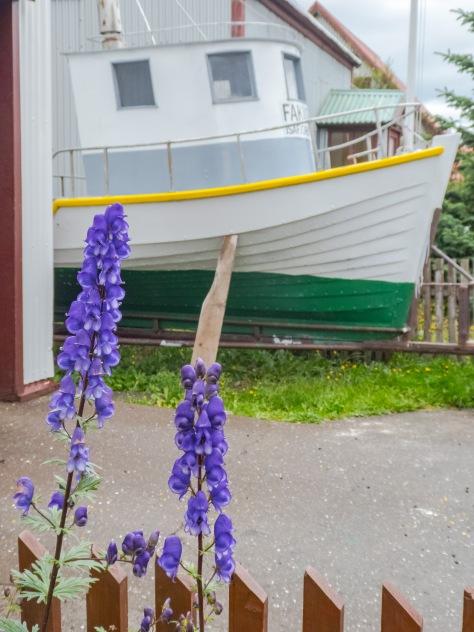 Isafjordur-18