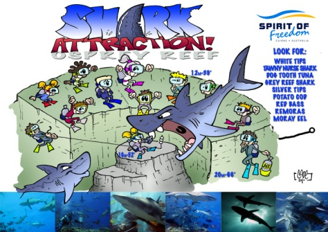 Ribbon Reef Sites-Vili-5