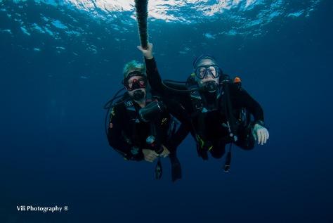 Nonkies at Holmes Reef Sites-Vili-36