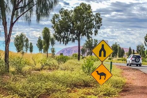 Uluru-220